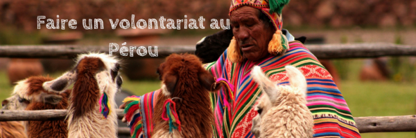 Faire un volontariat au Pérou